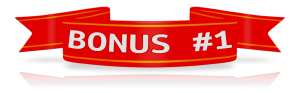 bonus custom_red_flag_banner_12426